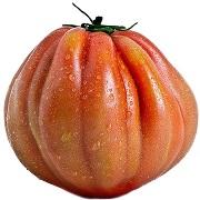 Pomodori Cuore di Bue Piemonte