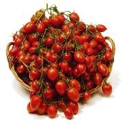Pomodori Piccadilly Vesuvio