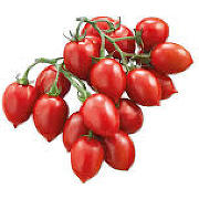 Pomodori Piccadilly Bio