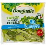 Bonduelle Mix Lattugoso