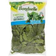 Bonduelle Spinaci