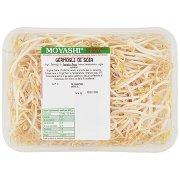 Moyashi Germogli di Soia 0,250 Kg