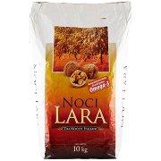 New Factor Noci Lara