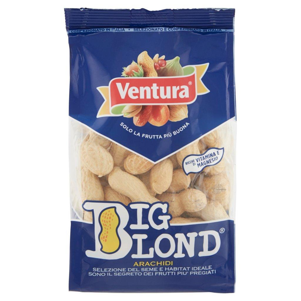 Ventura Big Blond Arachidi