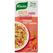 Knorr Buono per Te Orzo, Farro & Quinoa con Verdure Profumate al Basilico