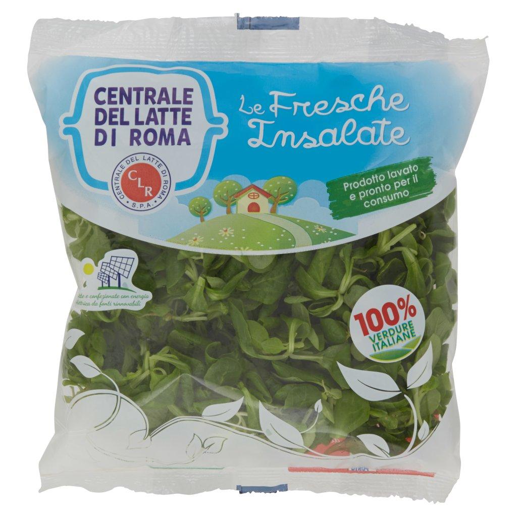Centrale del Latte di Roma Le Fresche Insalate Valeriana