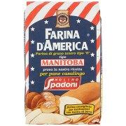 """Molino Spadoni Farina d'America Farina di Grano Tenero Tipo """"0"""" Tipo Manitoba"""