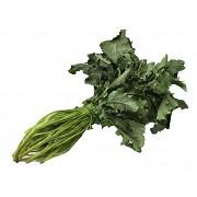 Broccoli Fiolari di Creazzo