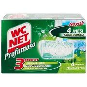 Wc Net Profumoso Mountain Fresh