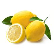 Cytryny Odmiana: Primofiore